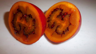 Powerfrucht Tamarillo