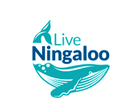 2019 marks a year of movement for Live Ningaloo